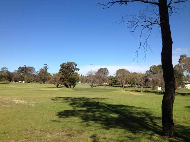 A view of green at Singleton Golf Club