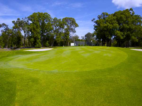 A view of the 2nd green at Waratah Golf Club
