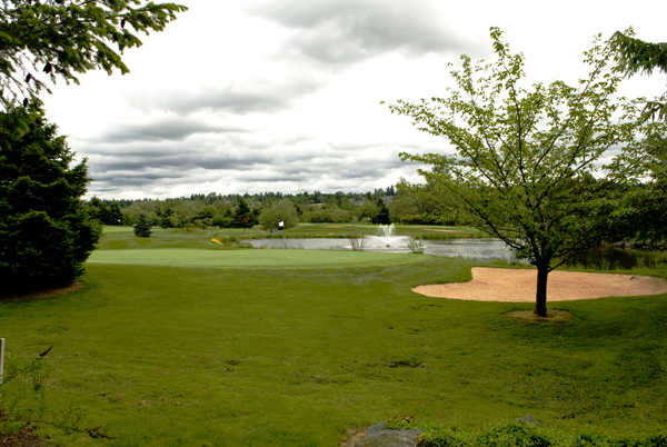 A view of a green with water coming into play at Heron Links Course from Willows Run Golf Club