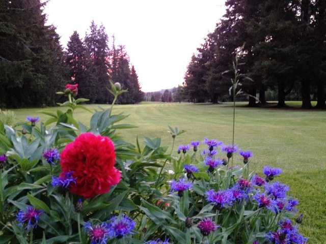 A view from Vernonia Golf Club