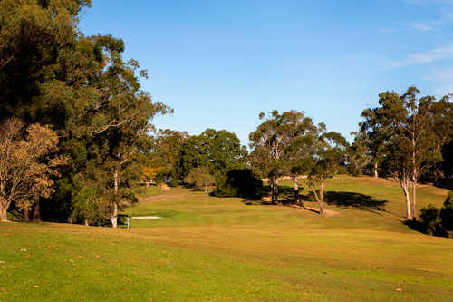 A view of green #6 at Pine Rivers Golf Club