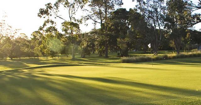 A sunny view of green at Wynnum Golf Club