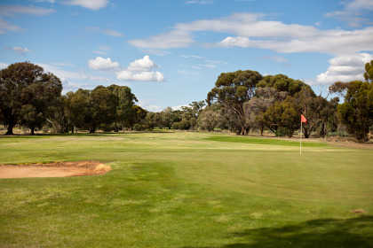 A view of the 8th green at Barmera Golf Club