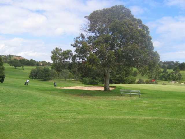 A view of the 9th green at Marion Park Golf Club