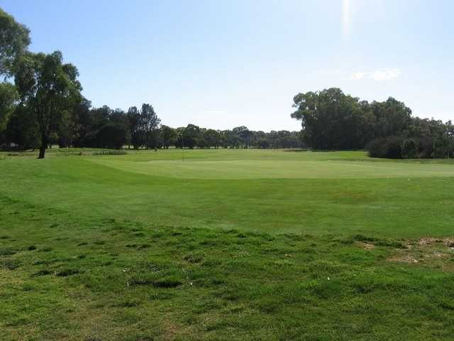 A view of green at Eastern Sward Golf Club