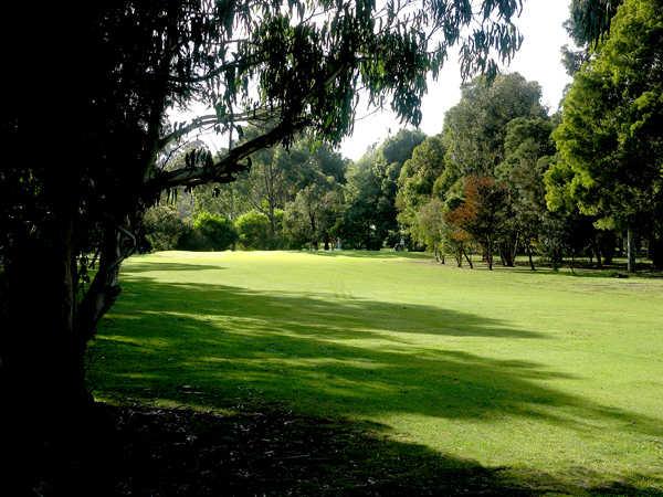 A view of the 14th fairway at Foster Golf Club