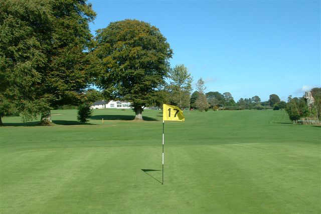 A view of the 17th hole at Baltinglass Golf Club