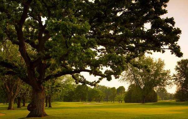 A view of a fairway at Nakoma Golf Club