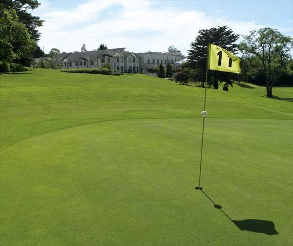 A view of the 11th hole at Nuremore Golf Club