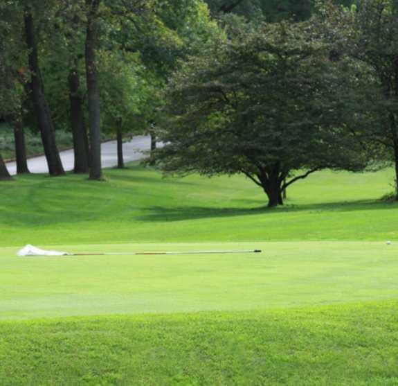 A view from Hansen Park Golf Course