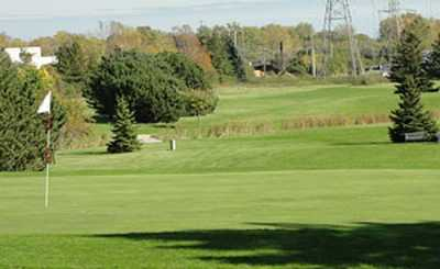 A view of green at Noyes Park Golf Course