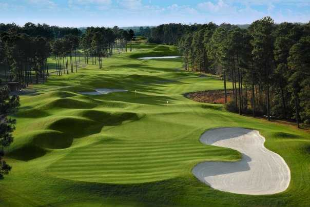 A view of the 6th and 17th holes from the Avocet Course at Wild Wing Plantation