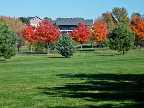 A fall view of fairway at Kilkarney Hills Golf Course
