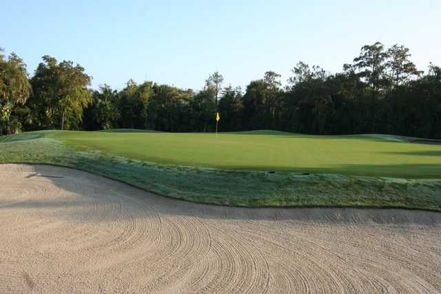 A view of the 11th green at Olde Florida Golf Club