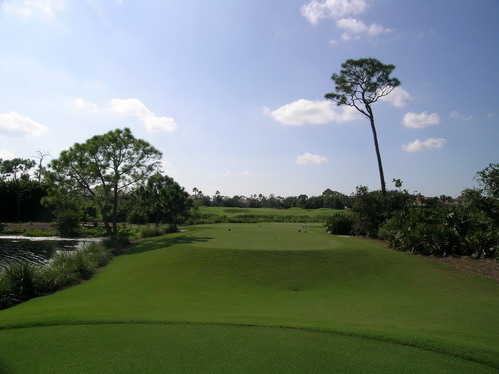 A view from tee #2 at River Ridge from Harbour Ridge Yacht & Country Club