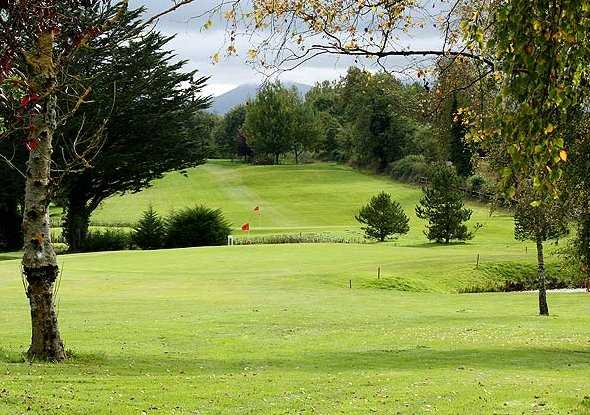 A view of a green at Ballykisteen Golf and Country Club