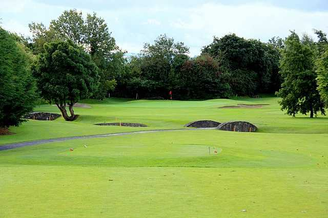 A view of the 11th green at Lucan Golf Club