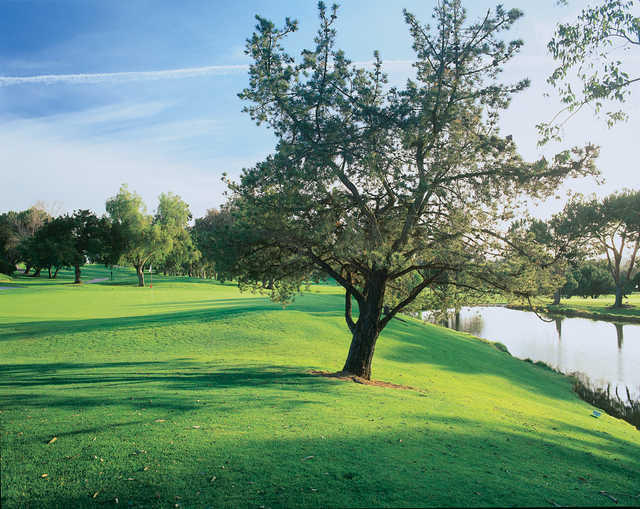 A view of a green with water on the right at Oaks North Golf Course.