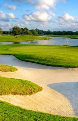 A view of the 6th green at Old Palm Golf Club
