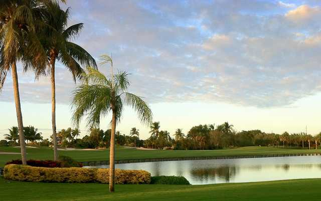A view of the 15th hole at The Falls Club of the Palm Beaches