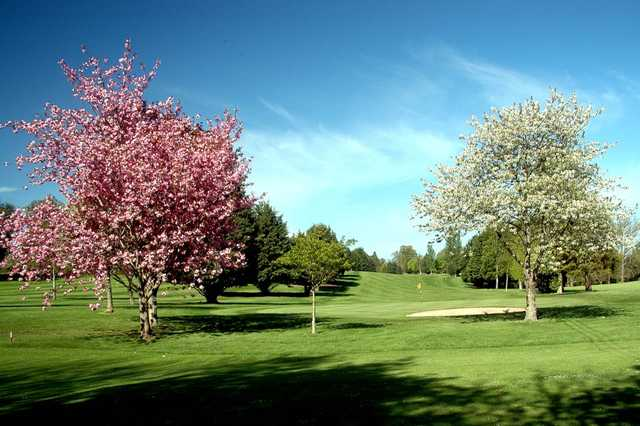 A spring view of the 18th hole at Hirsel Golf Club