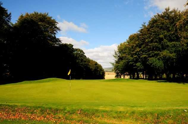 Immaculate greens at Kirriemuir Golf Club