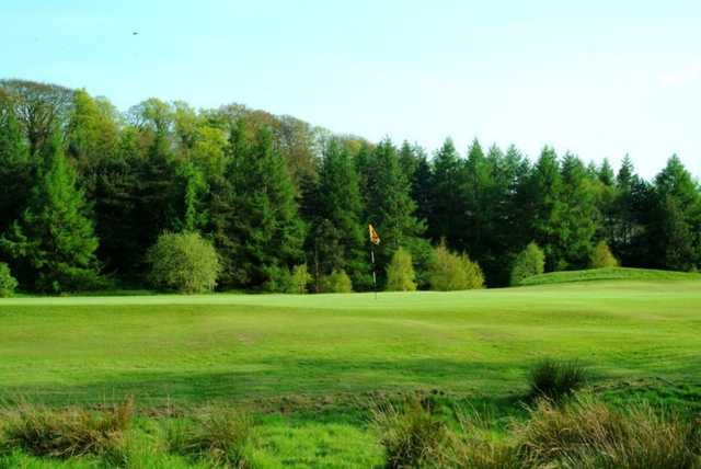 Superb greens and beautiful trees surrounding the course at Bishopbriggs
