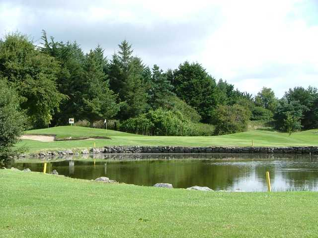 A view over the water of green at Shannon Golf Club
