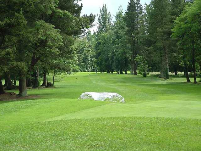 A view of the 16th fairway at Charleville Golf Club