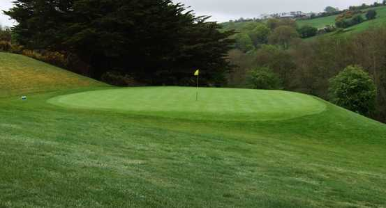 A view of the 6th green at Muskerry Golf Club