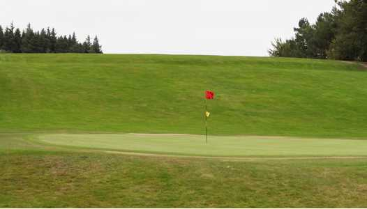 A view of hole #11 at Muskerry Golf Club