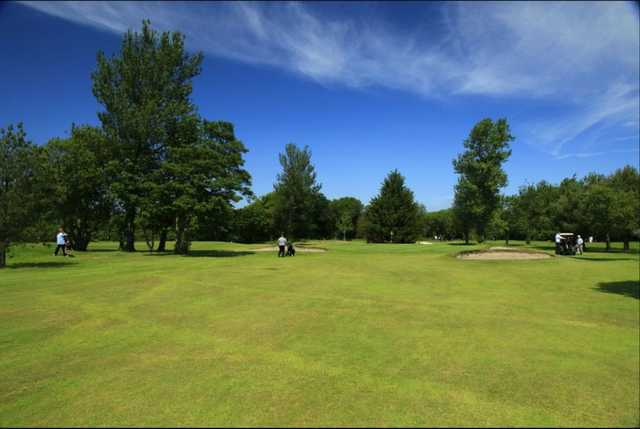 Fairway view on a sunny day
