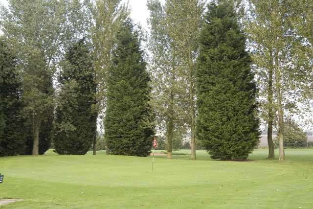 Tall trees protecting the green at Tilsworth Golf Centre