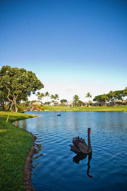 A beutiful view of the lake on the 18th hole at Ko Olina Golf Club