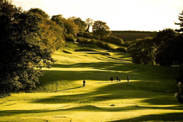 A sunny view of fairway at Breadsall Priory Golf & Country Club