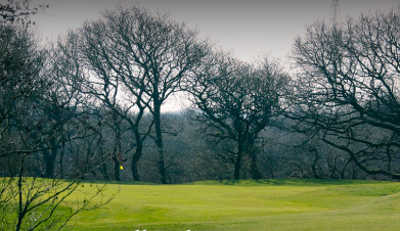 A view of green at Holsworthy Golf Club
