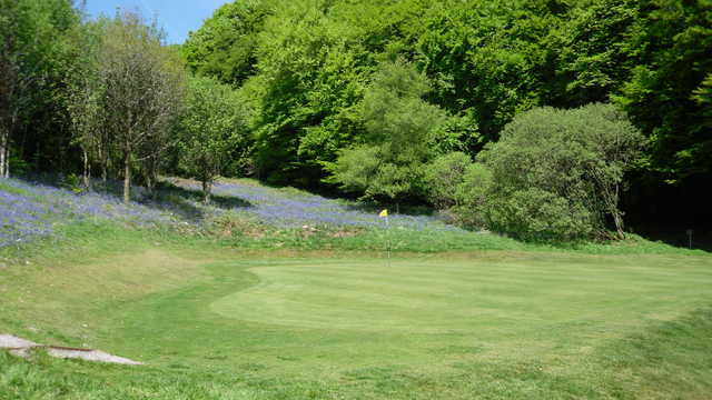 A view of the 9th green at Sidmouth Golf Club
