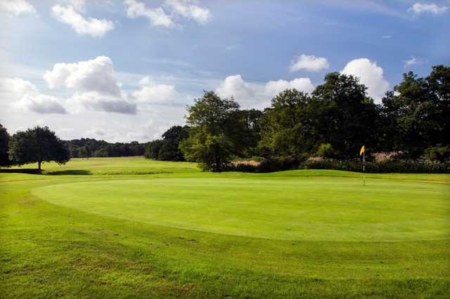 A view of green at Ferndown Forest Golf Club