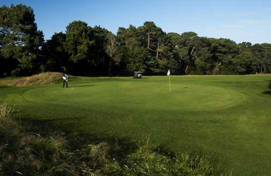 A view of green from Club & Lodge at Meyrick Park