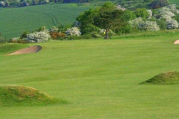 A view of the 4th green at Brighton & Hove Golf Club
