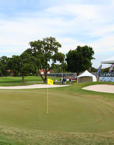 A view of a green at Miccosukee Golf & Country Club