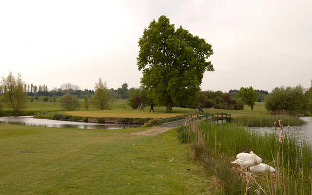 A view of the island green at Woolston Manor Golf & Country Club