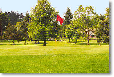 Lake Oswego GC #8: Your tee shot must carry over a large tree to an elevated green. No bunkers on this hole.