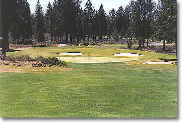 Hole #6 is a dogleg right with sparse trees to the left and right. Watch for the large mound of lava rock and brush that juts into the fairway (pictured) on the left.