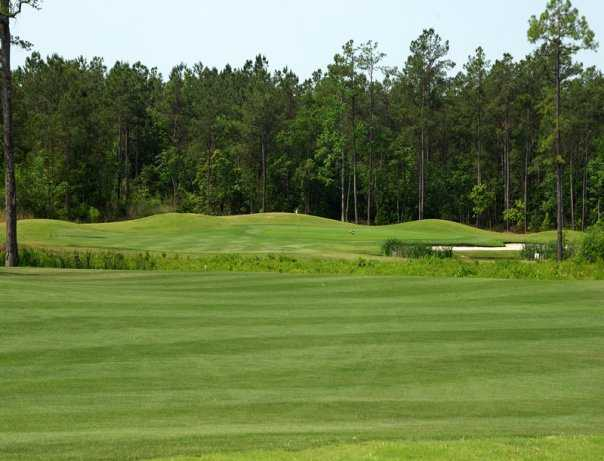 A view of the 6th green from the Diamondback Golf Course