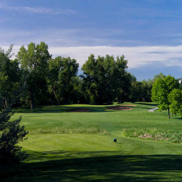 View of the tee area and the green in background at Coal Creek Golf Course