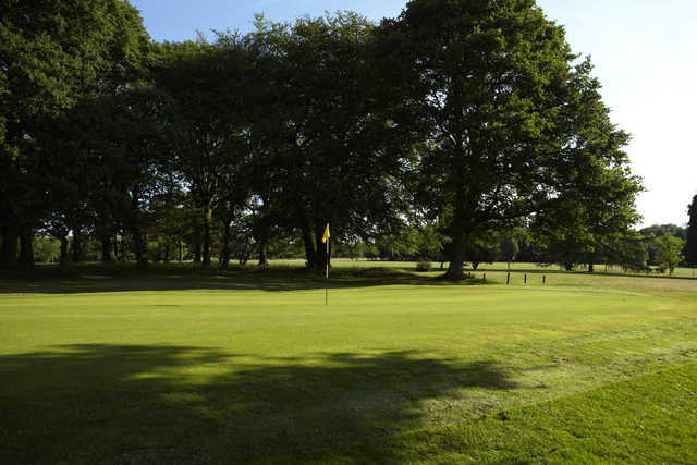 A sunny view of a green at Cherry Lodge Golf Club