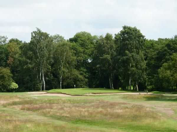 View of Elsham's 12th green over the rough