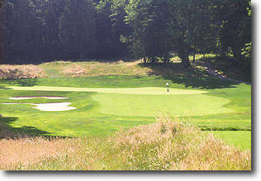 Ghost Creek @ Pumpkin Ridge #5: Big par 3 with a 10,000 square foot green! It plays a little longer than the yardage, so let it fly.