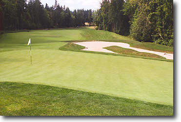 Ghost Creek @ Pumpkin Ridge #6: Gorgeous hole! Water right, OB way right, wetlands left, the creek comes right up to the edge of the green on the right. Short hole, but real demanding.